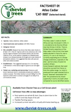 Factsheet 09
