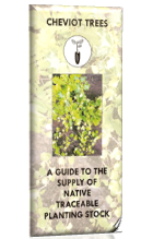 A guide to the supply of native, traceable planting stock