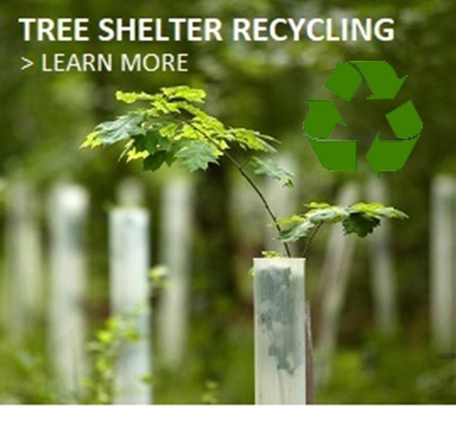 Tree Shelter Recycling