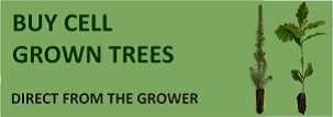 Buy Cell Grown Trees